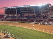Dubai World Cup grandstand