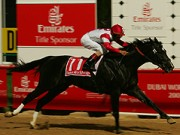 Dubai World Cup winner
